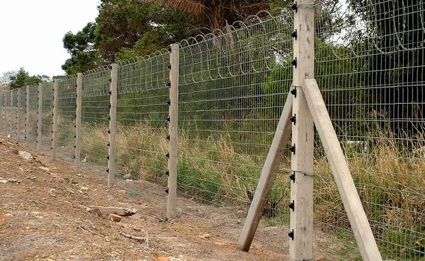 Razor Barbed Wire - Dingzhou Orient Hardware Products Company Co., Ltd.